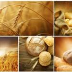 Laboratorio di Panificazione Naturale – la Pasta Madre e il suo utilizzo pratico
